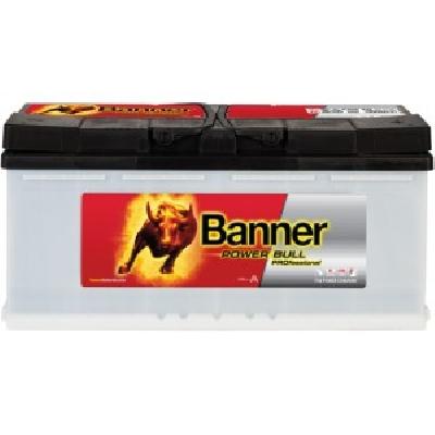 Banner P10040 100Ah R+